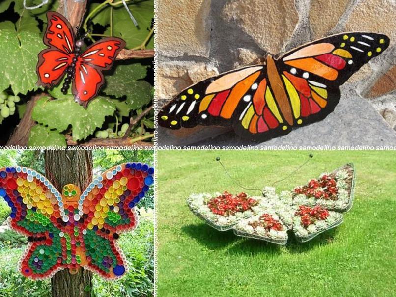 Разные бабочки