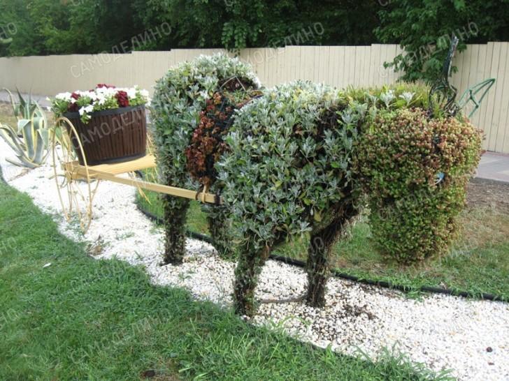 Клумба-ослик