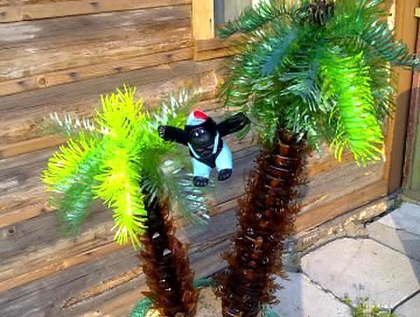 Небольшая пальма