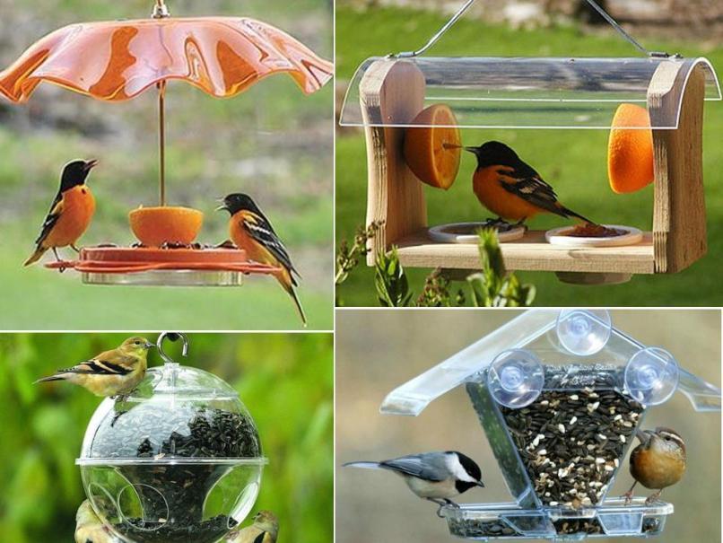 Птицы своими руками фото оригинальные идеи 807