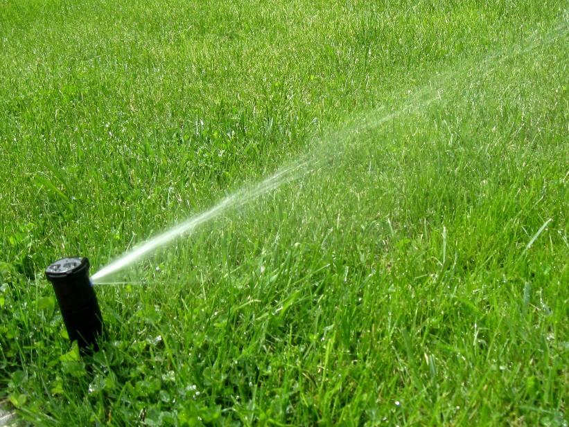 Организация системы автополива газона: особенности монтажа, нормы полива