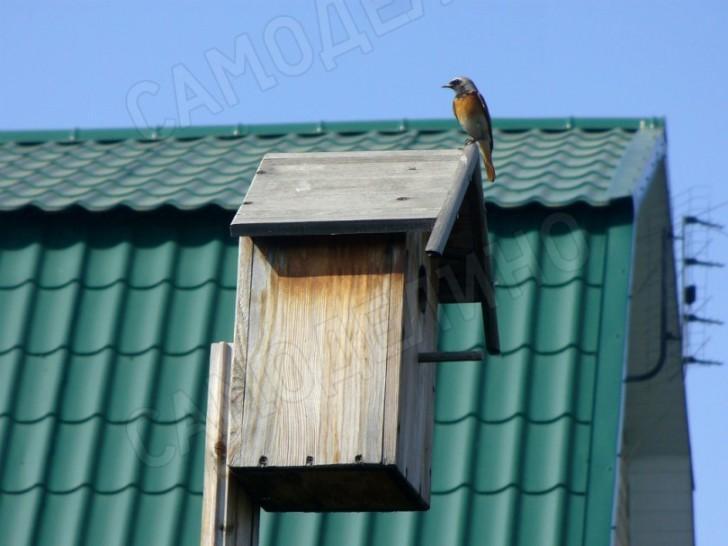 Домик для птичек своими руками из картона