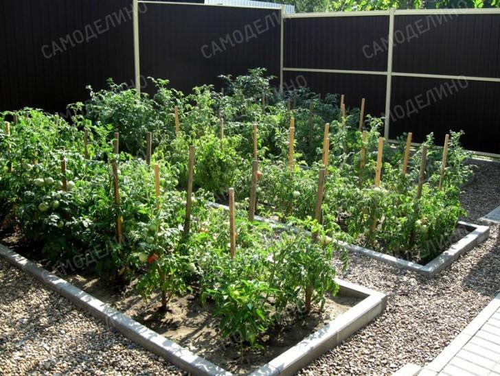 Огород для полива