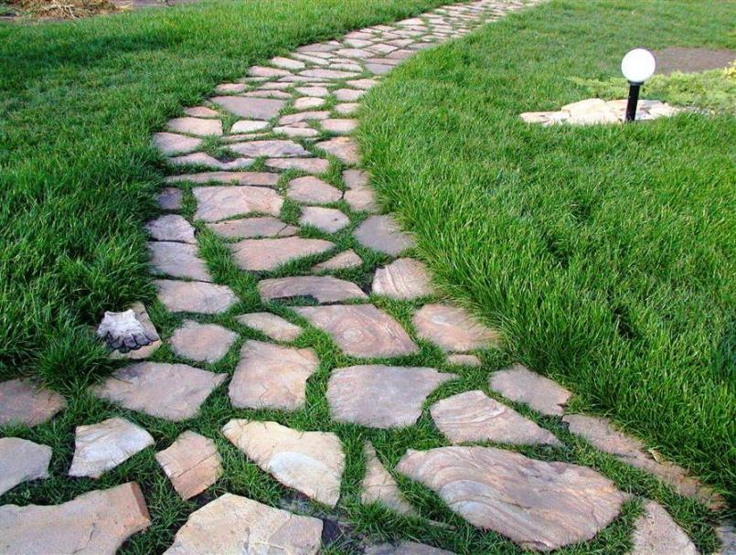 Трава между камнем