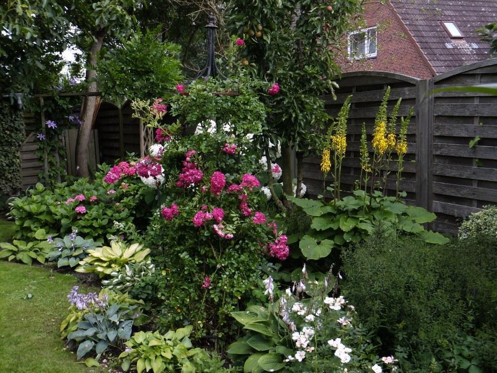 Оформление клумбы возле дома ? своими руками- фото красивых цветов в частном дворе