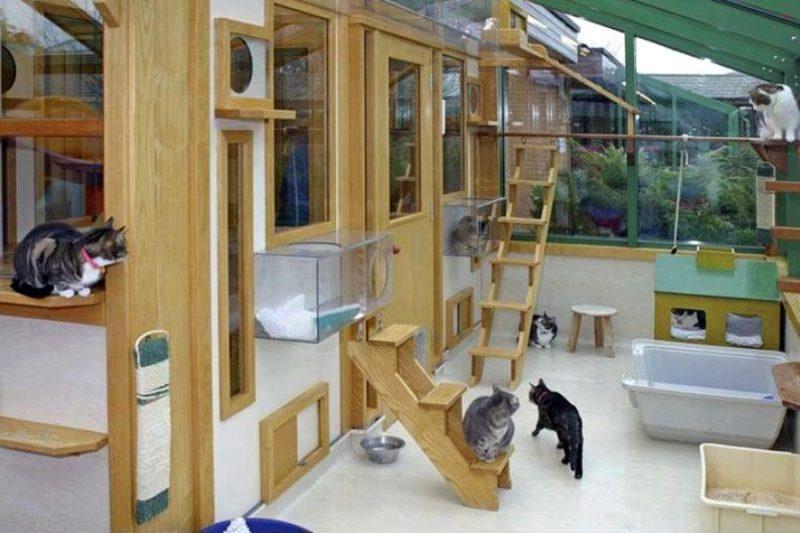Фото тысяч комнат в квартире после ремонта тесто