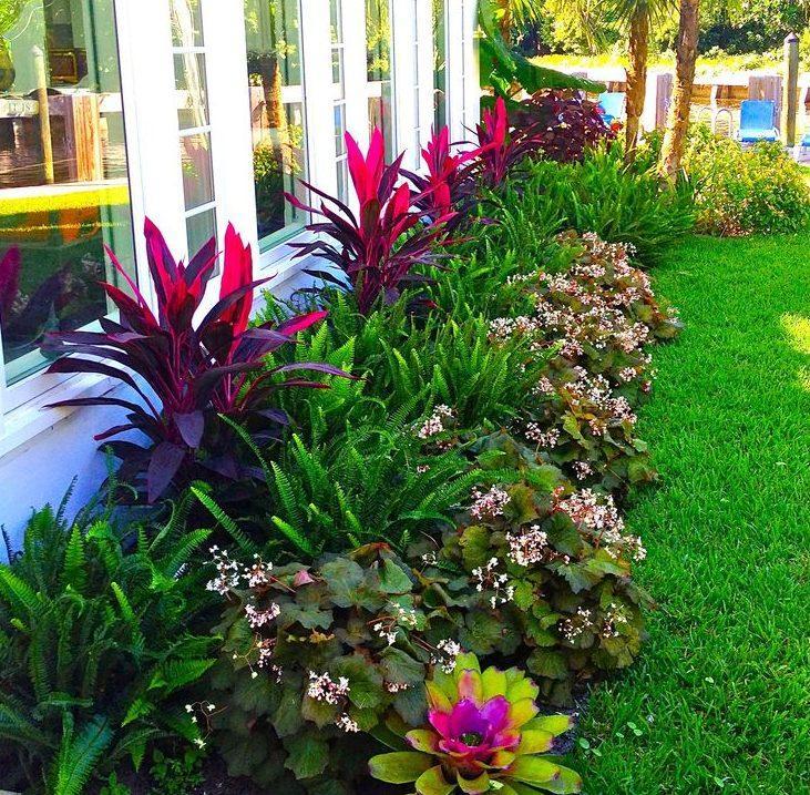 Бордюр для цветников - 55 фото идей как оформить