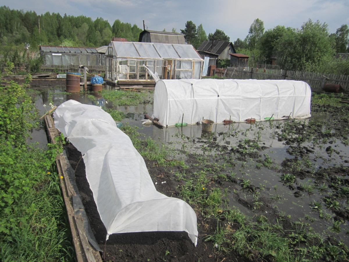 Как отвести воду с участка своими руками фото 371